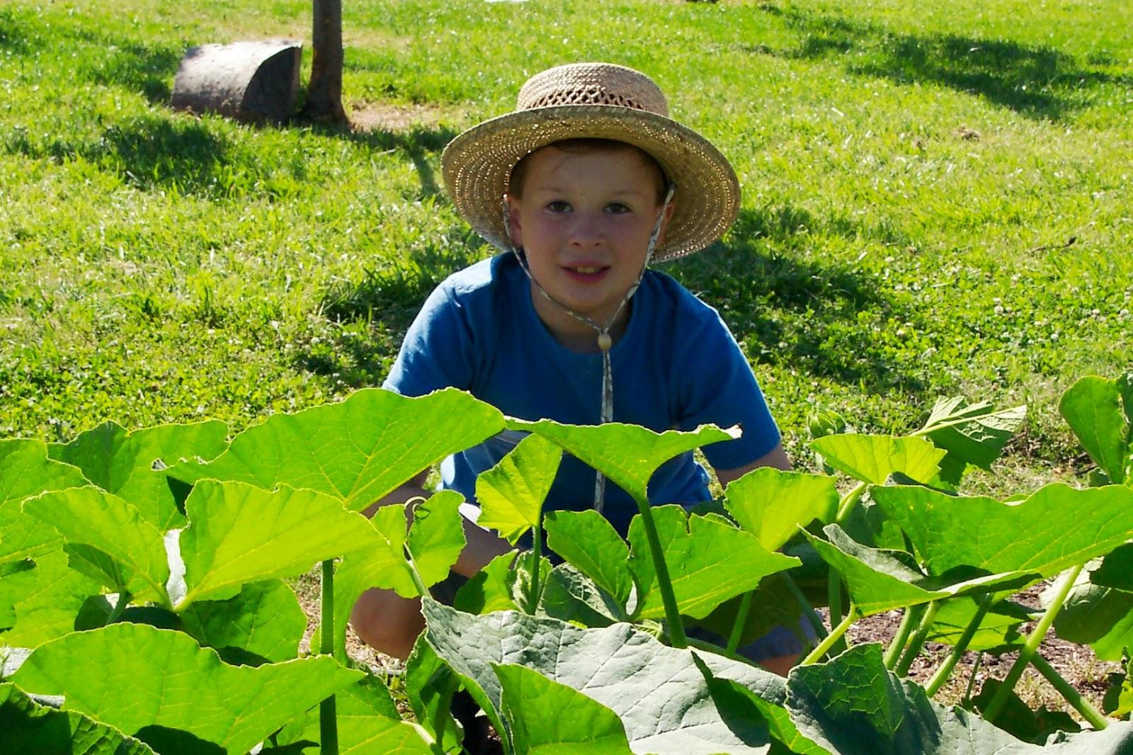 Renee 39 s garden seeds renee 39 s blog gardening with kids for Gardening with children