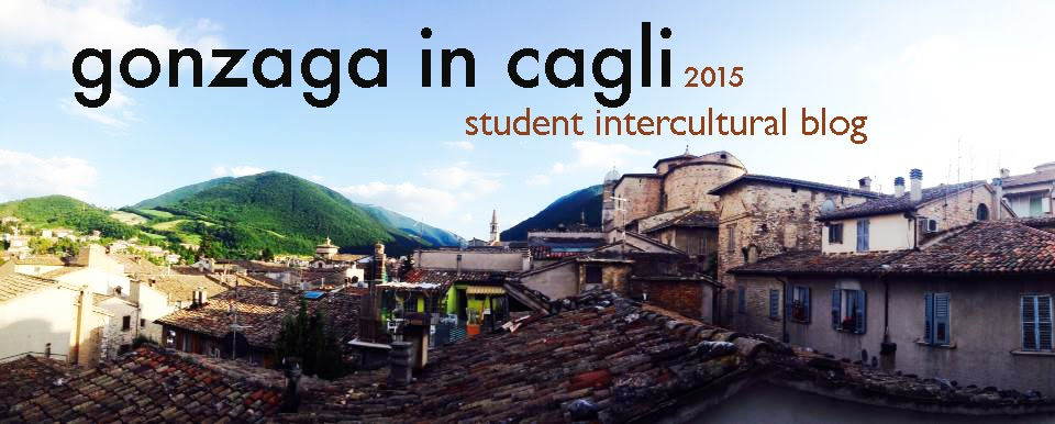 Gonzaga-in-Cagli 2015 Student Intercultural Blog