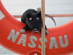 RAT at Sea