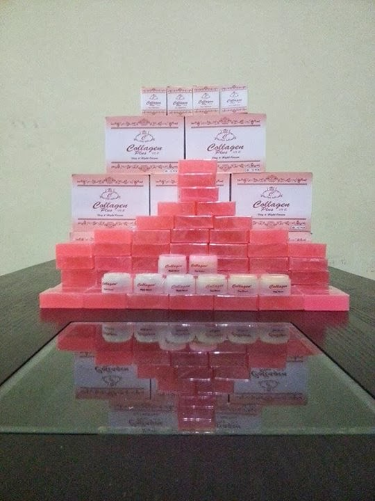 SET COLLAGEN PLUS VIT E RM 35 FREEPOSTAGE SEMENANJUNG,