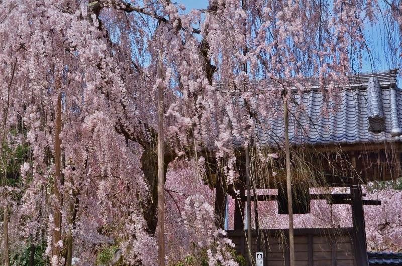 Ono-temple