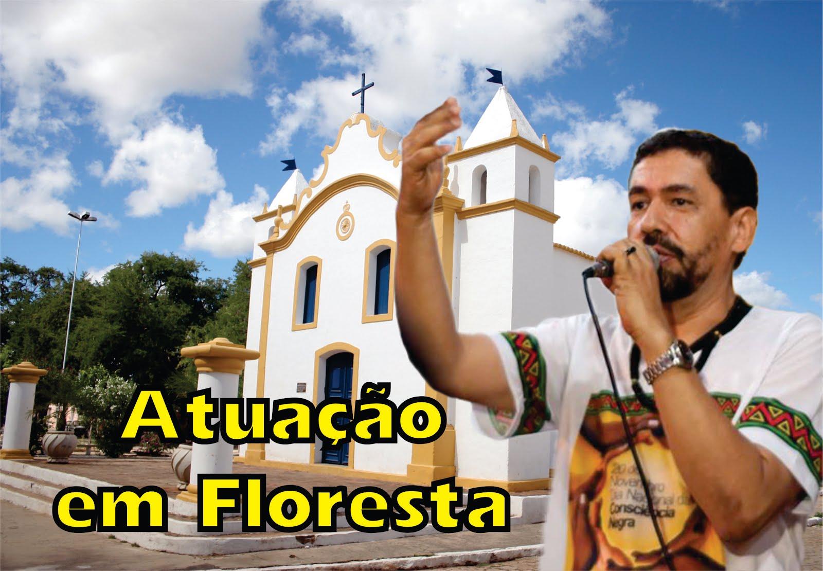 ATUAÇÃO EM FLORESTA