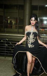 Deepa Picture Gallery at The Pink Affair Fashion Show  5.jpg