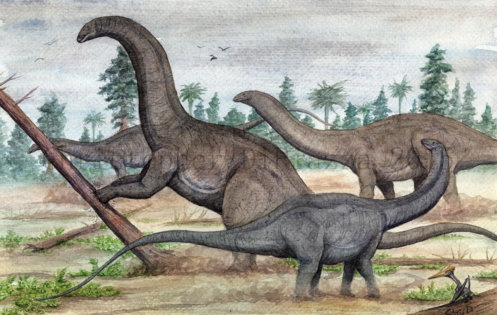 Prehistoric Beast of the Week: Apatosaurus: Beast of the Week