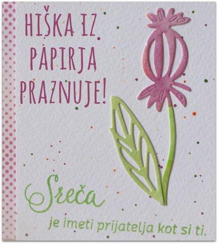 HIŠKA IZ PAPIRJA-2.rojstni dan