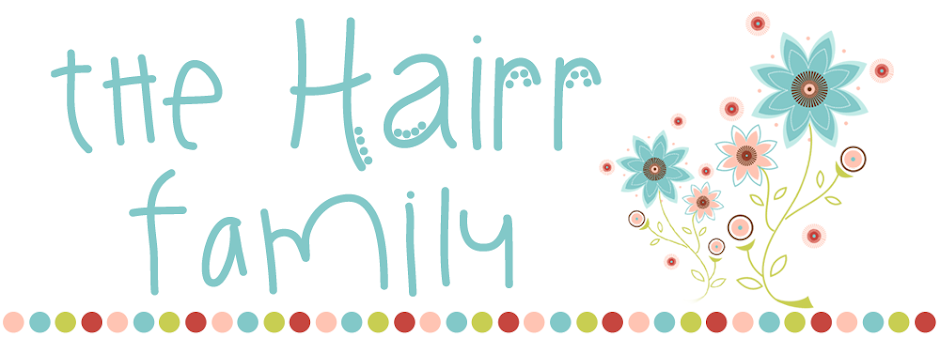 The Hairr Family Blog