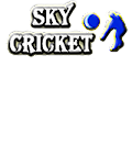 Play Online Cricket games for free and read Cricket News