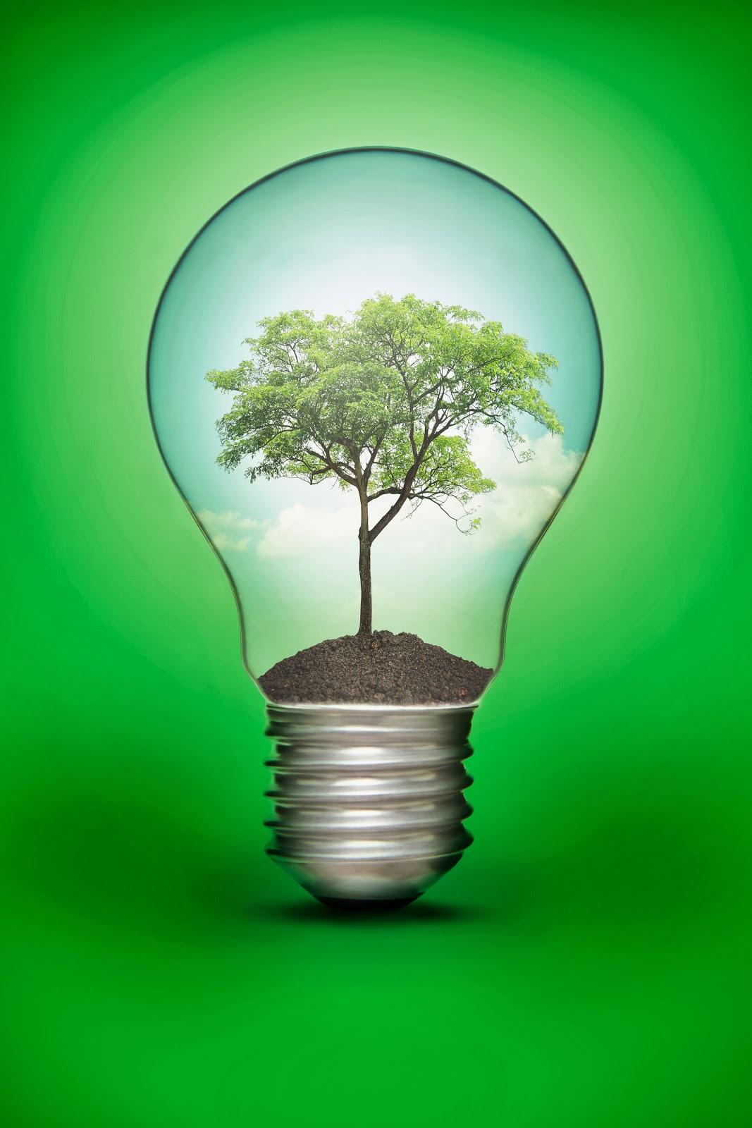 Iluminare verde