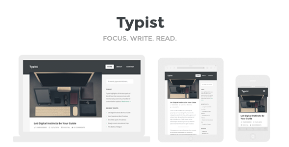 wp writer theme