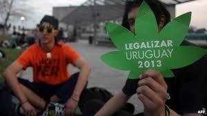 Uruguai aprova legalização da maconha