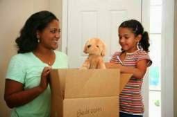 http://parentpalace.com/2012/05/how-to-make-a-move-easy-for-kids/