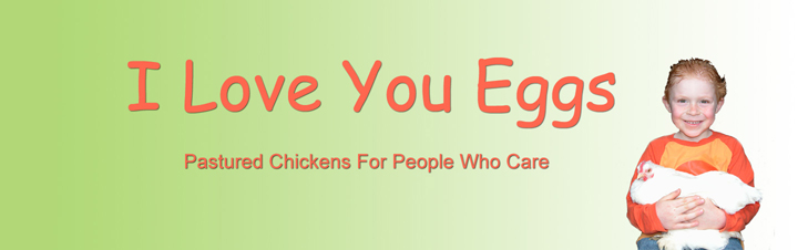 I Love You Eggs