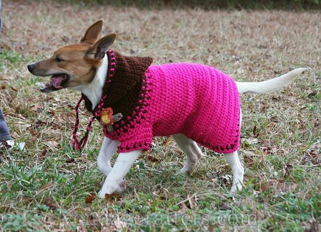 Free Crochet Pattern Dog Hoodie : Crochet Dog Hoodie Pattern ~ Lets Crochet.com
