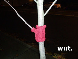 sweater on tree