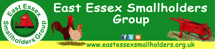 East Essex Smallholders Chitchat