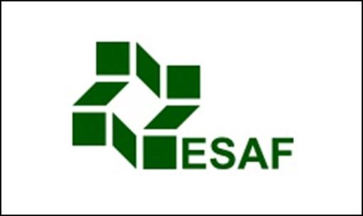 Concurso ESAF