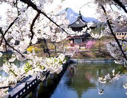 Поездка в Республику Южная Корея самостоятельно
