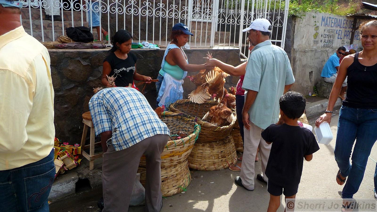 http://3.bp.blogspot.com/-Y_NPOyJnMuk/T_Bi-KE6gzI/AAAAAAAAJQY/Oz7mtqZzvLc/s1600/Grenada+Nicaragua+market+chickens+2266.jpg