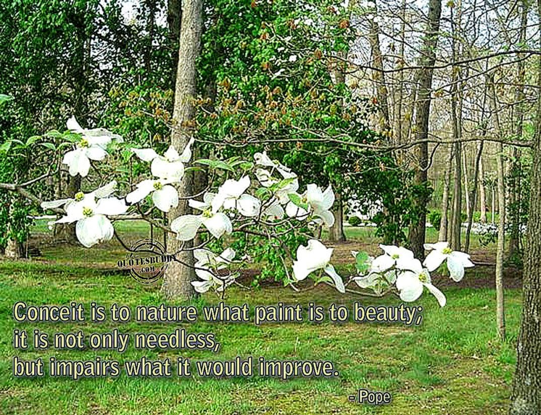 Beautiful Nature Quotes Free Hd Wallpapers