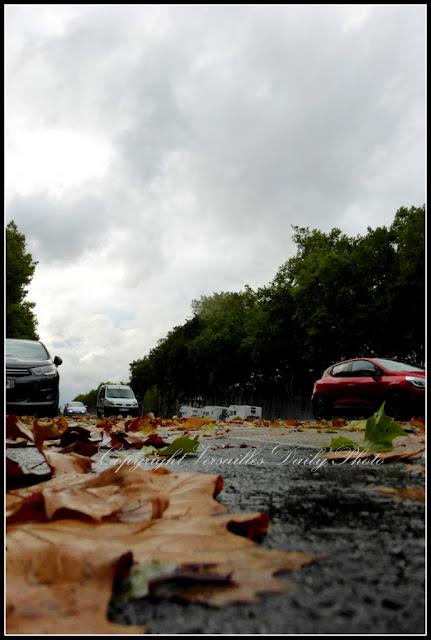 Tempête avenue de Paris à Versailles storm