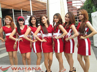 Agency SPG Reguler, agency spg regular