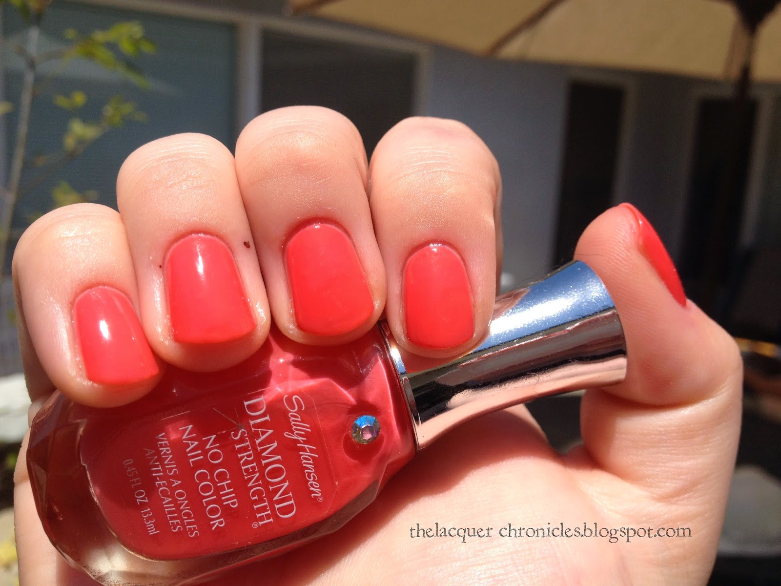 The Lacquer Chronicles: Sally Hansen Something New