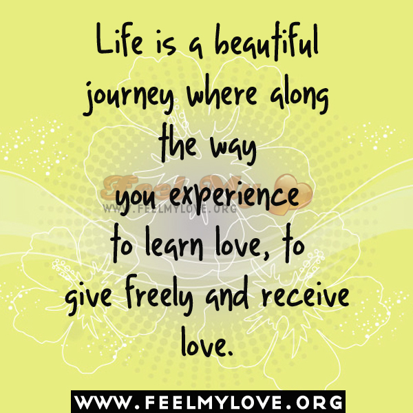 life beautiful journey essay