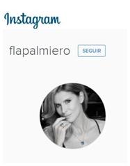 Instagram Fla Palmiero