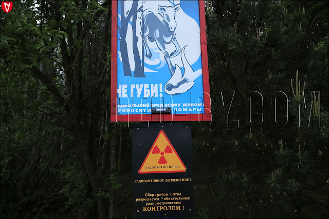 Замер радиационного фона на знаке предупреждающем о радиоактивном заражении у деревни Дайнова