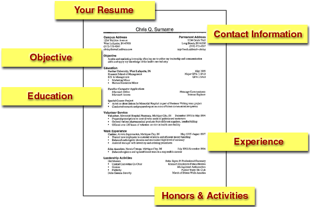 Exceptional Resume Website: Writing Personal Details