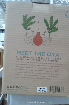 Growoya Medium Oya keeps your plants watered even when you forget