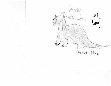 Hermine - Short-tail weassel
