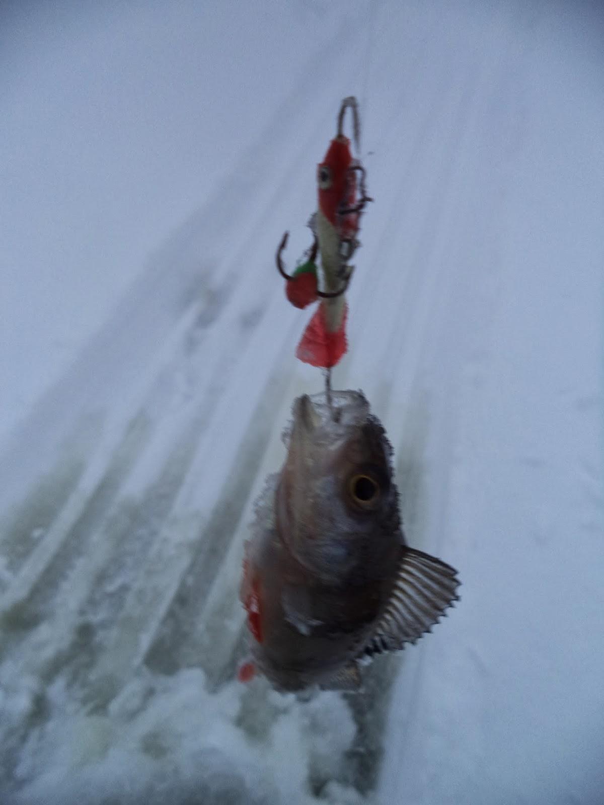 чертик на рыбалку фото
