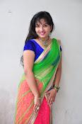 Actress Roshini Dazzling photo shoot-thumbnail-6