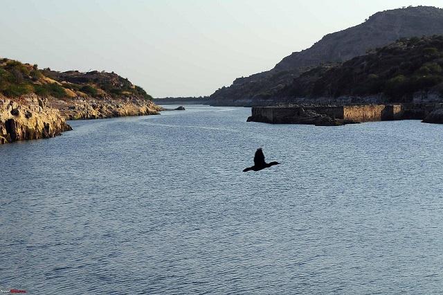 Balsamand Lake - Things to do in Jodhpur