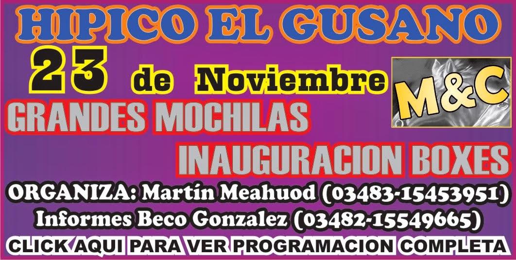 .EL GUSANO - 23/11/14