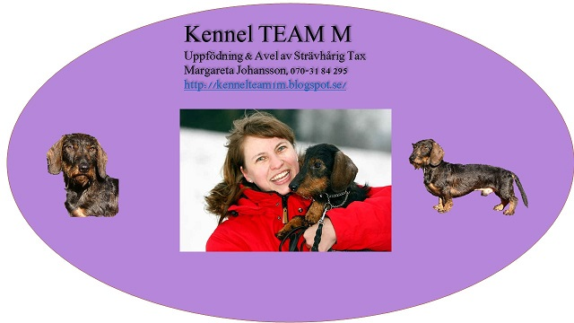 kennel TEAM M