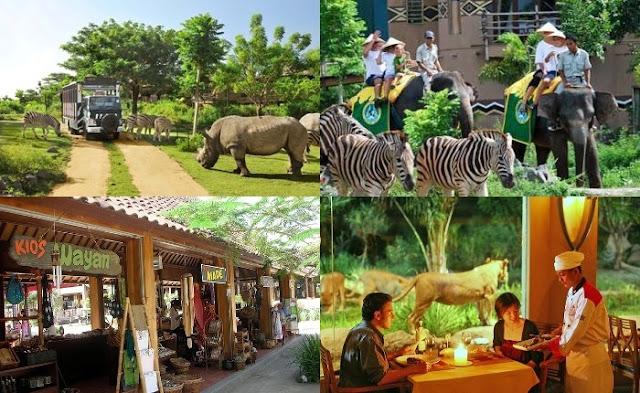 Things to do in Bali in Safari & Marine Park 4