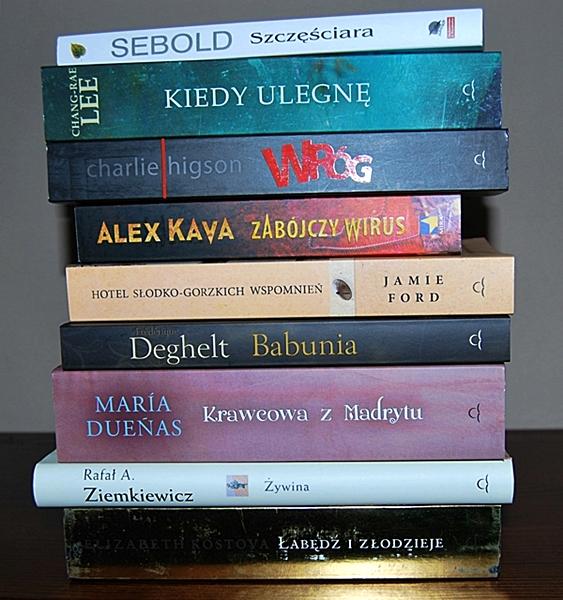 Świr książkowy i jego stosiki