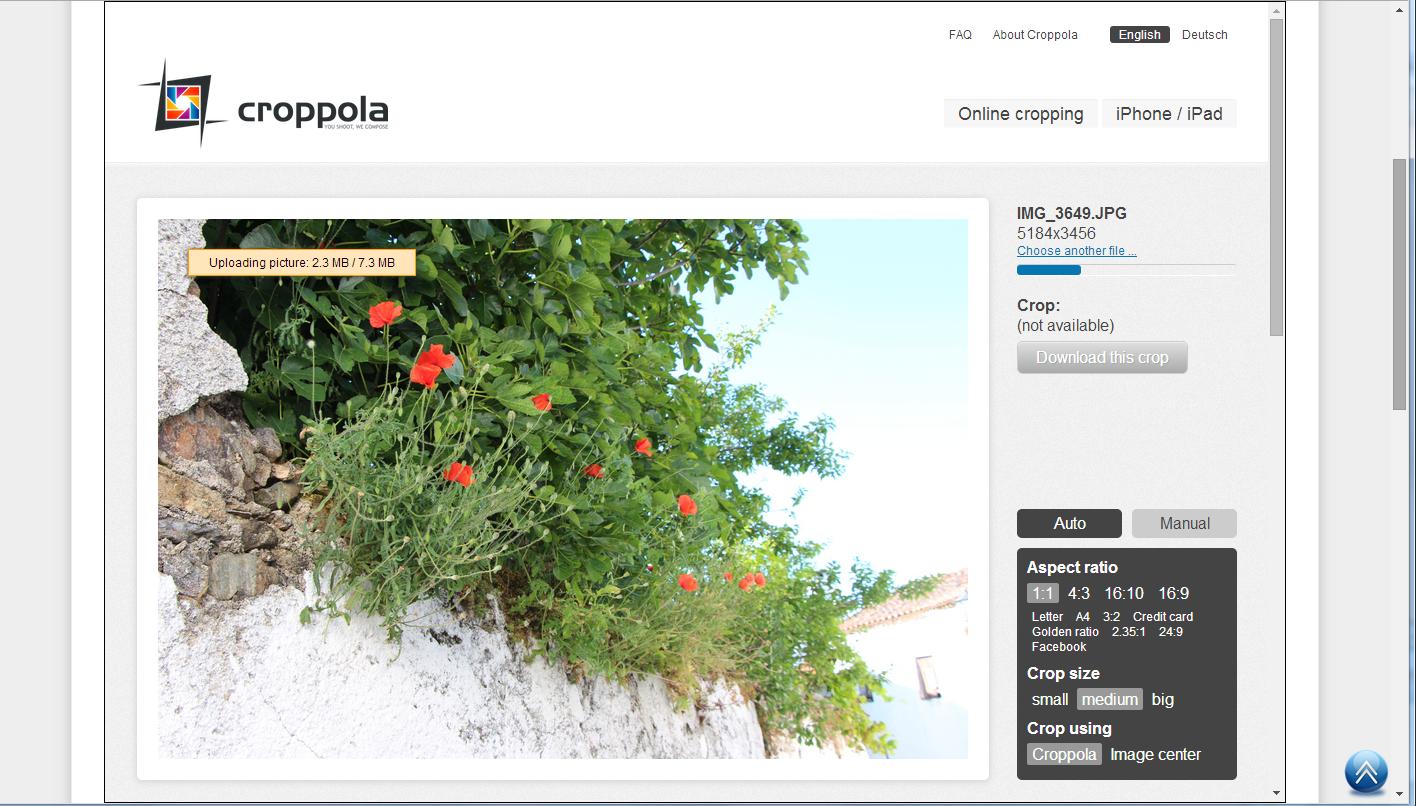 Croppola-Carregamento de foto
