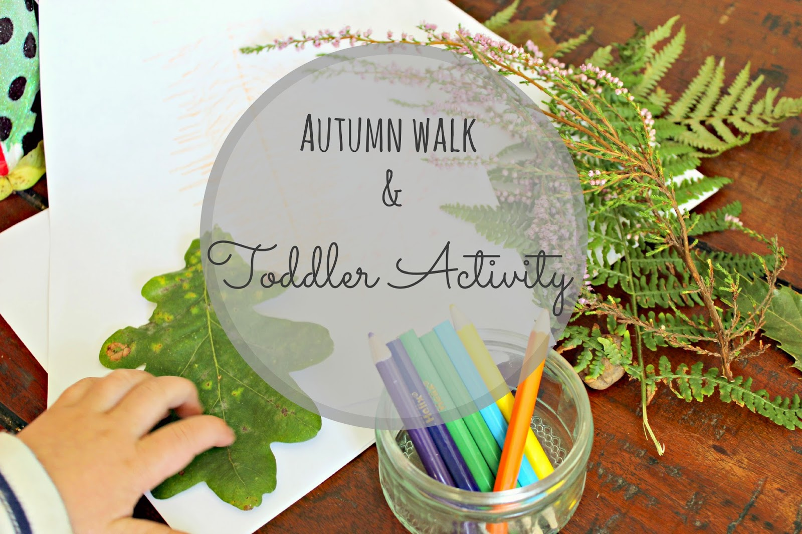 Autumnal toddler activities leaf rubbings