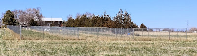 three 25'x300' six foot chain link fence dog runs