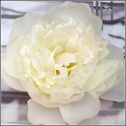 bloemenbroche