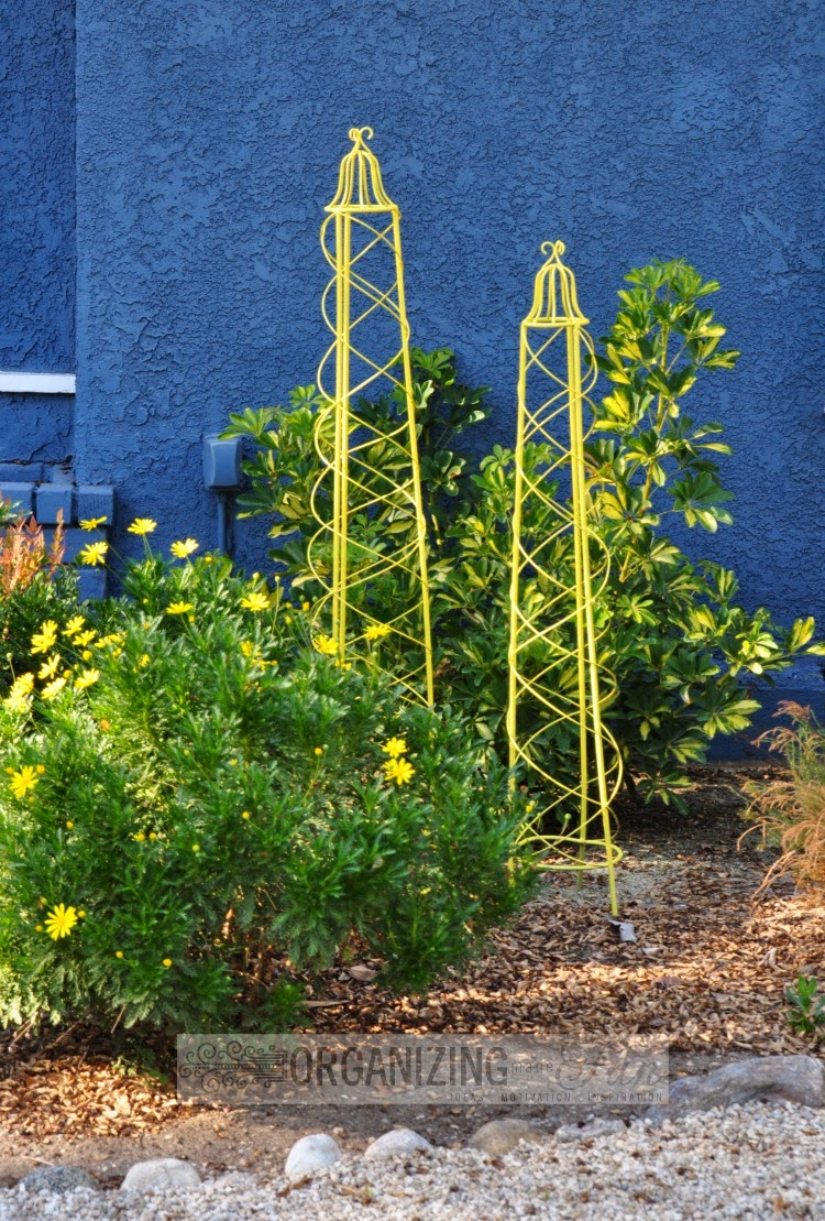 Cute trellises paint a pop of bright yellow for interest in the front yard :: OrganizingMadeFun.com