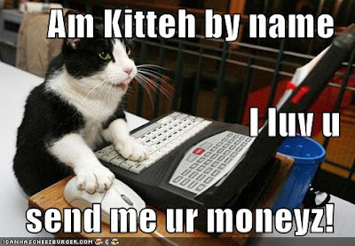 Kitty scammer