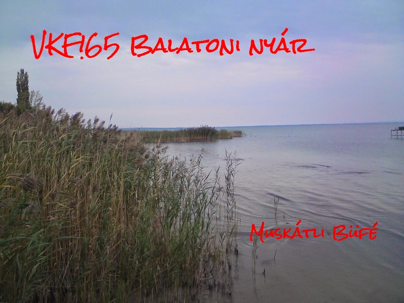 http://muskatlibufe.blogspot.hu/2014/08/osszefoglalo-vkf65-balatoni-nyar.html