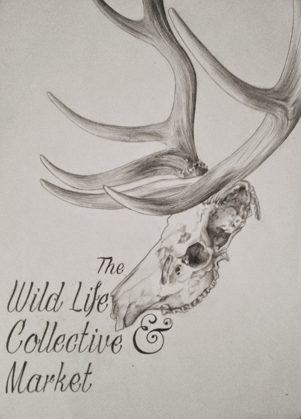 Elk skull, The Wild Life Collective Market, Drawing, Poster, Design