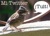 ¡Tuit!