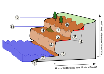 Landforms in the world coastal and oceanic landform 32 for The definition of terrace
