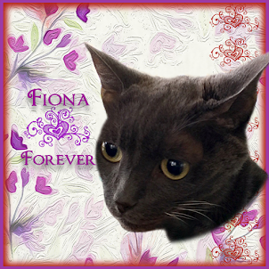 And our furrend Fiona!